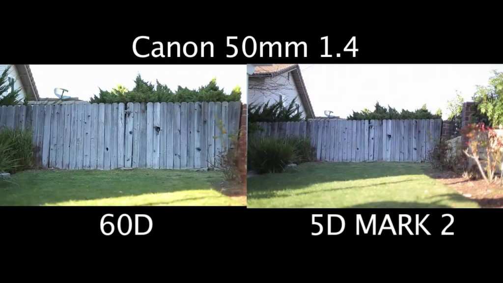 full frame crop sensor